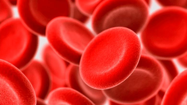 prp plasma rico em plaquetas quirocenter